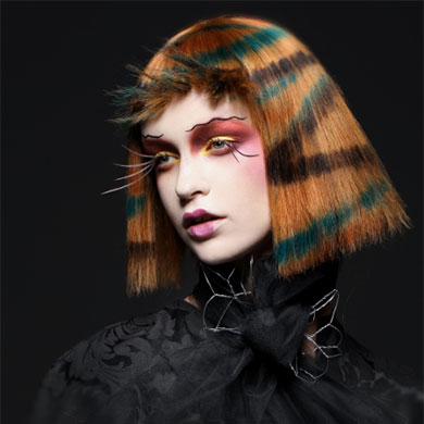 The NAHA 2019 Winners!