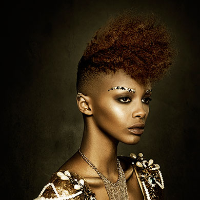 Eclectic – Hair Collection by Ammon Carver